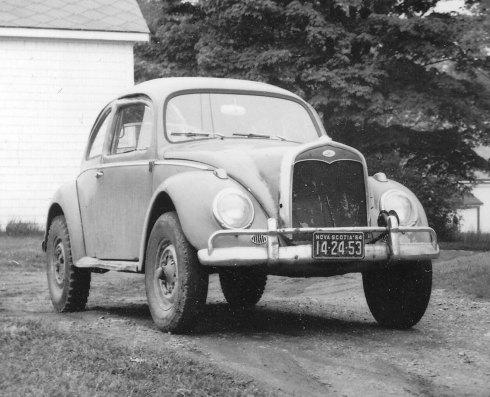Bug_Ford