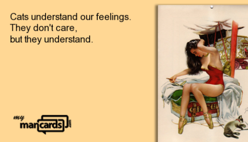 cat_feelings